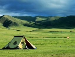 Steppe, Mongolia